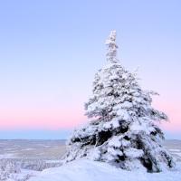 Finnország - akciós utazások!!!