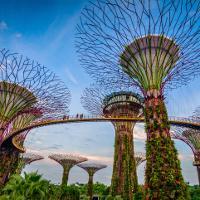 Repülőjegyek Szingapúrba