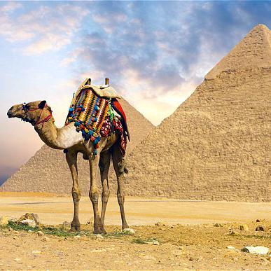 Nyaralás Egyiptomban - akciós utazások!!!